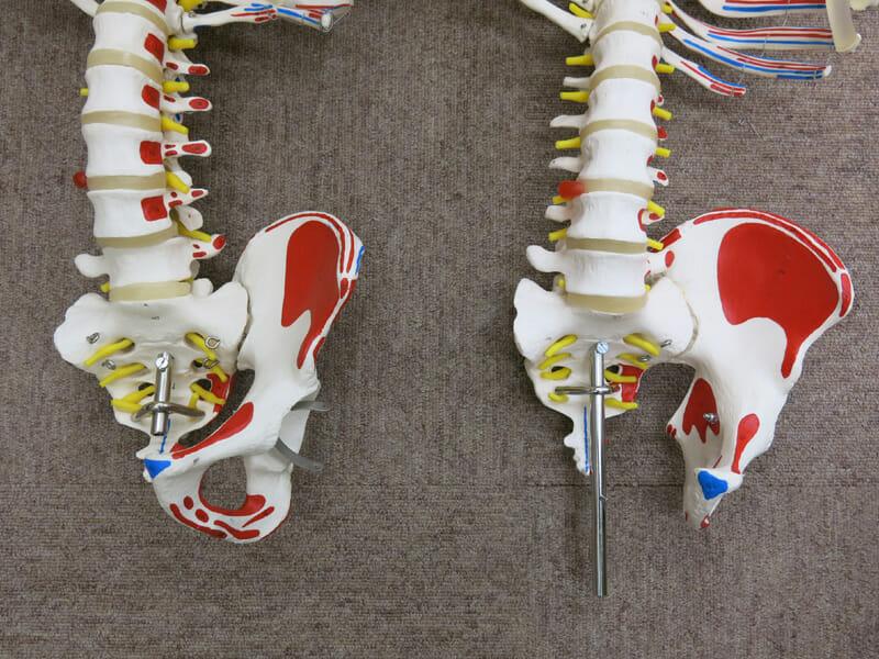 左:吊下げ型、右:直立型