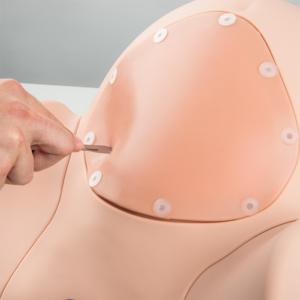 腹壁インサートを切開し帝王切開を想定した練習が可能です。