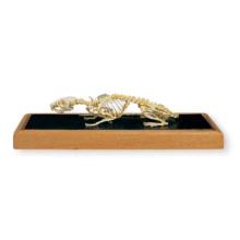 ラットの全身骨格標本