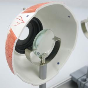 水晶体レンズ(標準)