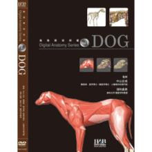 DVD デジタルアナトミーVol.1 Dog