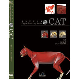 DVD デジタルアナトミーVol.2 Cat