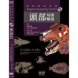 DVD デジタルアナトミーVol.3 頭部局部解剖