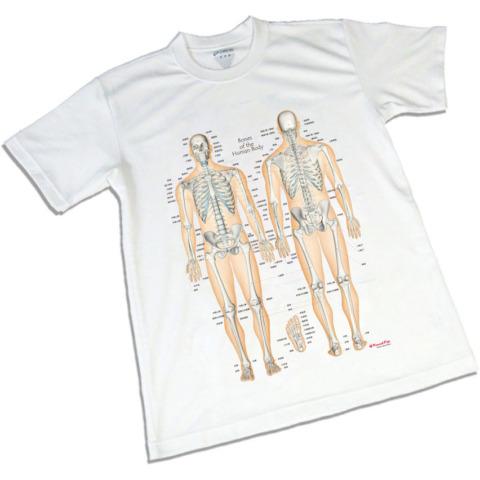 骨格チャートTシャツ