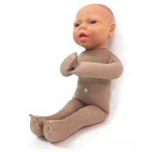 成熟胎児モデル