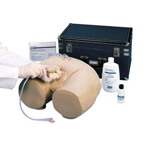 男性導尿法シミュレーター