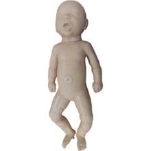 交換用胎児
