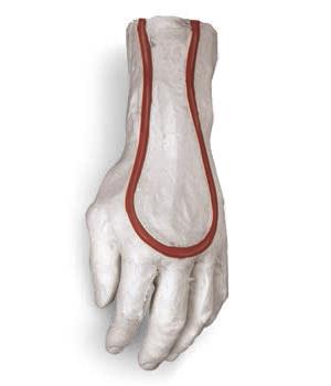 血管の位置