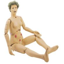 人工肛門付き看護シミュレーター
