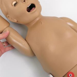肩関節の可動性