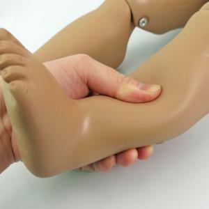 足:柔らかい素材,包帯法の練習に