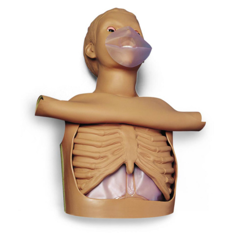 CPRサイモン,半身BLSシミュレーター
