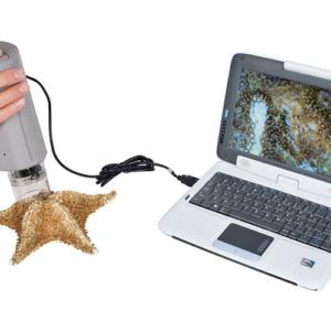 ハンディ顕微鏡で生物の表面観察