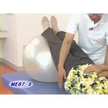 高齢者の健康増進・介護予防のための運動療法 〜歩行能力の維持と向上をめざして〜