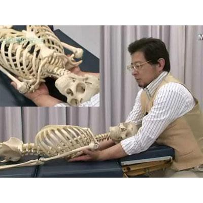 身体呼吸療法〜身体呼吸誘導の操作とメカニズム〜