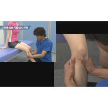 膝関節疾患に対する理学療法 〜変形性膝関節症を中心とした評価と治療〜