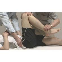 股関節のみかたとアプローチ 〜股関節の構造とシステムを理解する〜