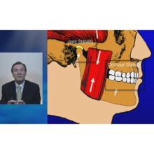 咬合、顎関節症、そして口腔顔面痛 〜顎関節の位置に関する論争〜