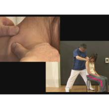 頚部機能障害に対する評価と徒手的治療