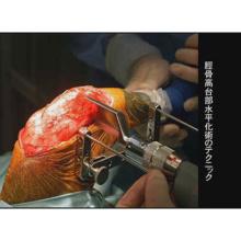 イヌの前十字靭帯断裂の外科治療