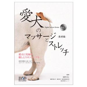 愛犬のマッサージとストレッチ