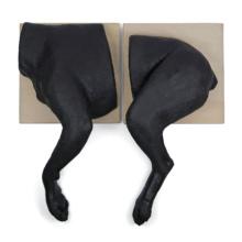 イヌのバンテージ・トレーニング模型 両肢セット