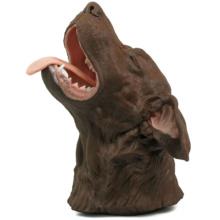イヌの口腔シミュレーション模型