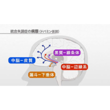 中枢神経作用薬(III)