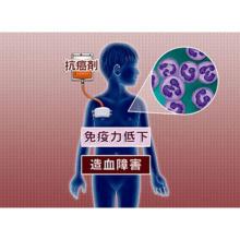 小児白血病の検査と治療 概要