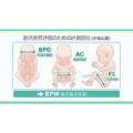妊婦健康診査と保健指導 妊娠中期