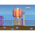 細菌の代謝・遺伝学